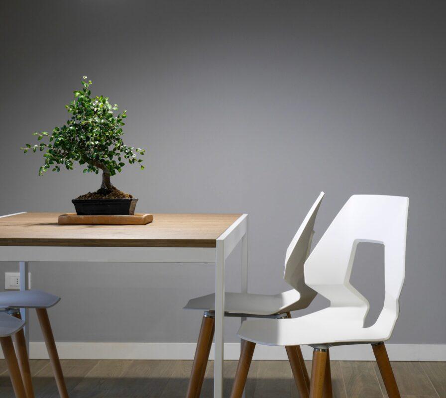 scaunul-accesoriul-necesar-i